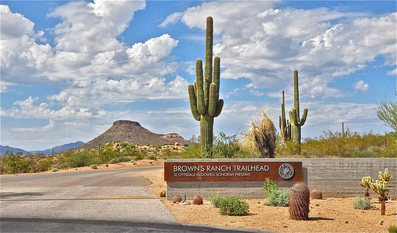 Iconic saguaros at the trailhead