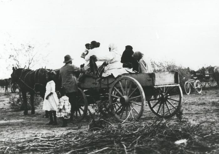 Family with Horse-Drawn Carriage